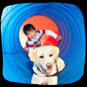 Junge und Hund im Spieltunnel